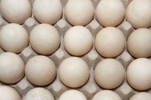 duck eggs-201